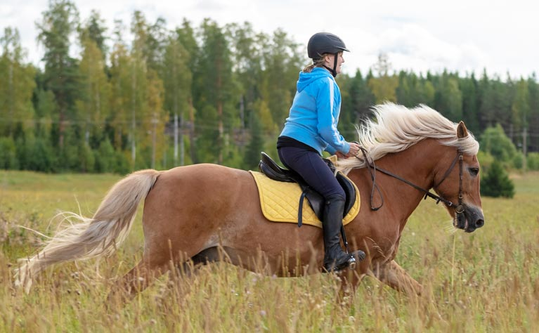 Kate riding horse