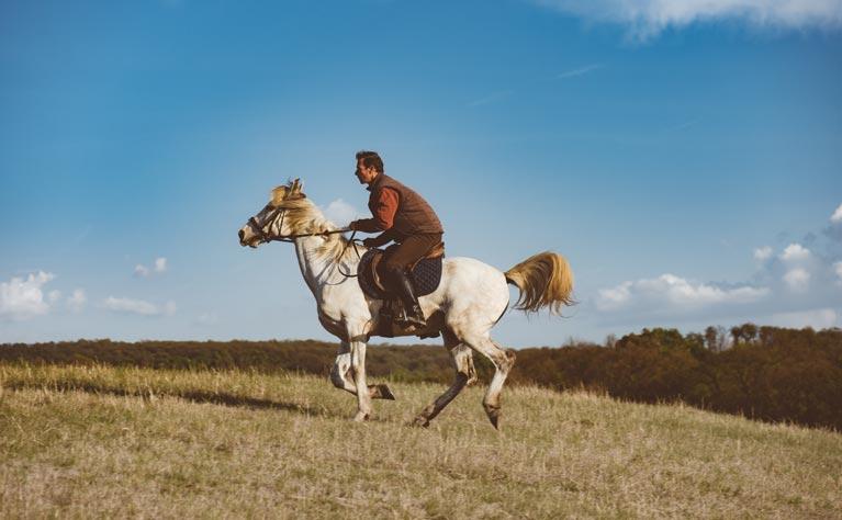 David on horse back